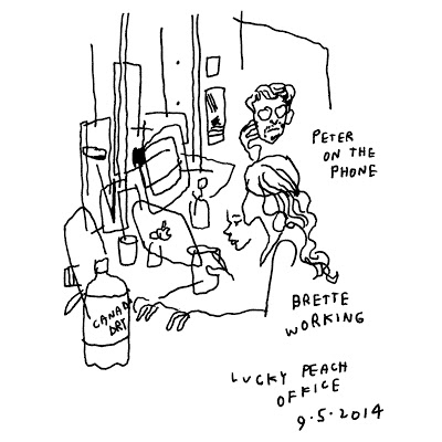 JASON POLAN'S TRYING/FAILING TO DRAW  EVERY PERSON IN NEW YORK