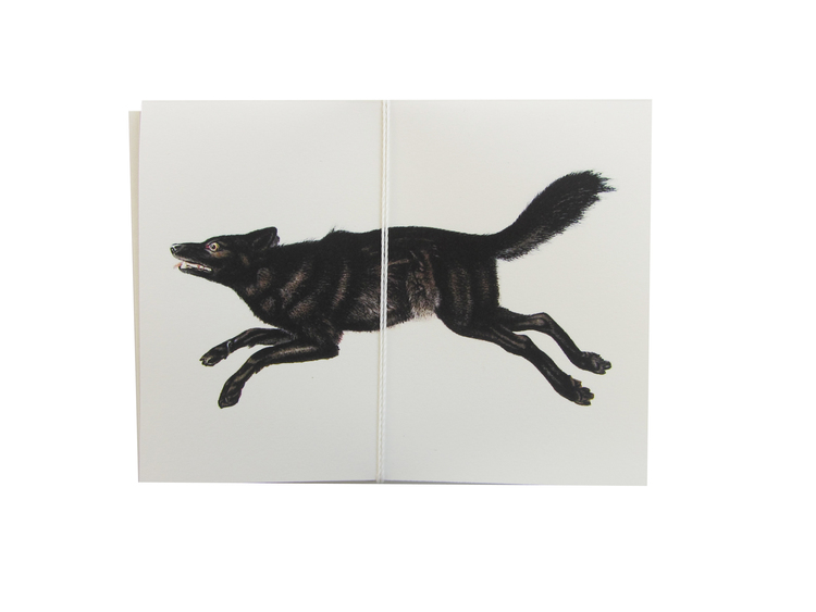 wolf card cult paper
