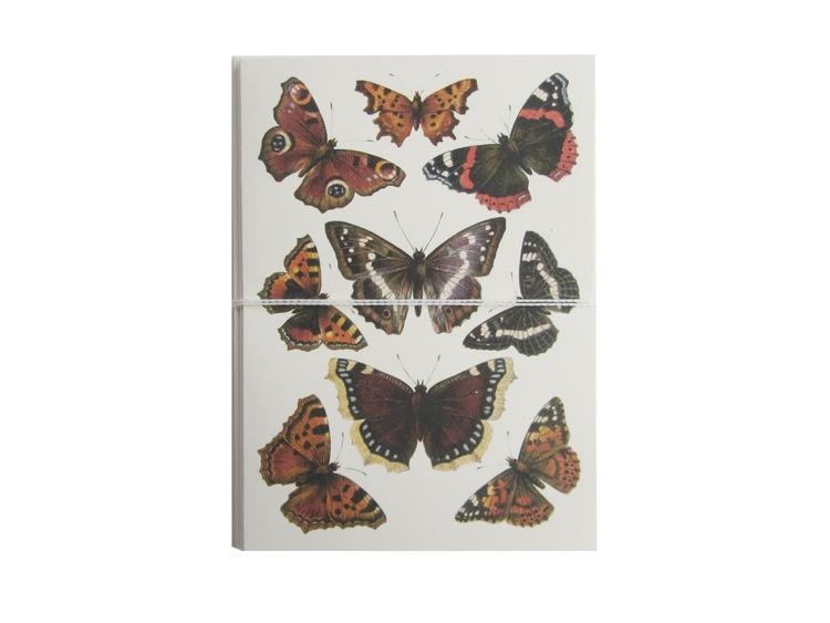 butterflies card cult paper