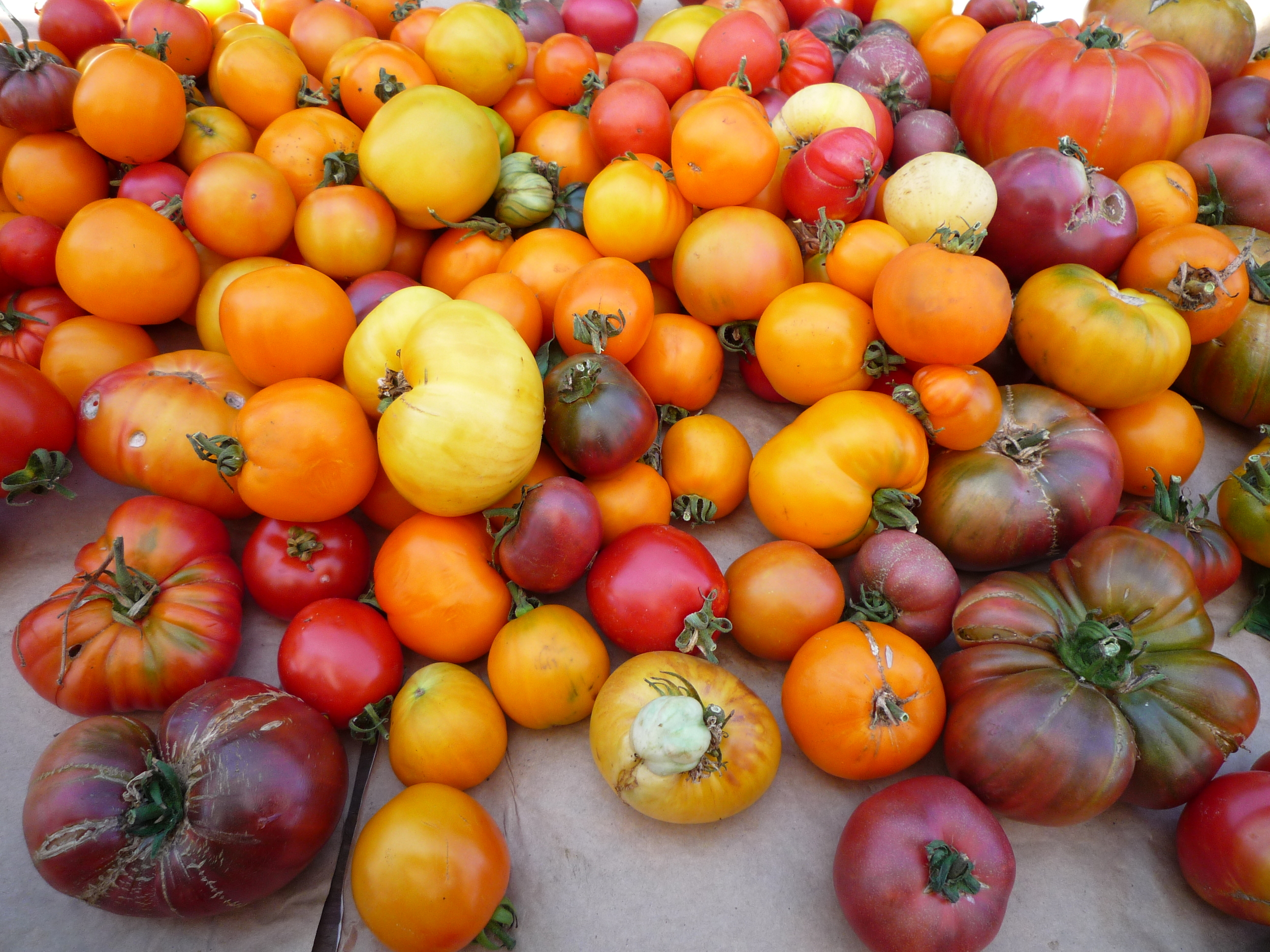 Heirloom cherry tomatoes of all shapes and sizes