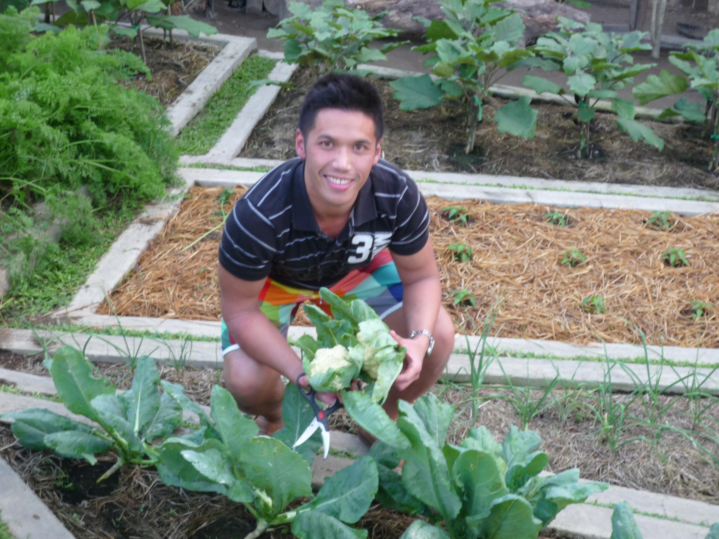 In my Uncle's garden in Batangas, Philippines