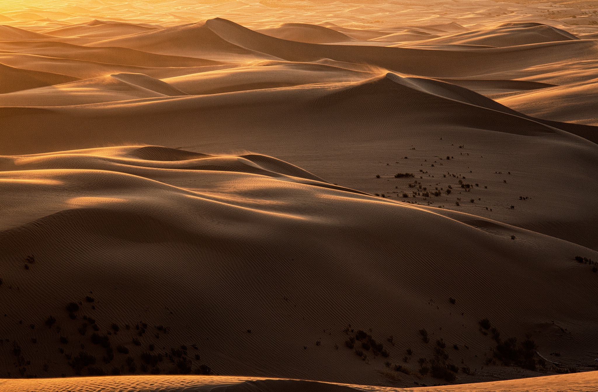Little Sahara Sand Dunes, Utah, 2018