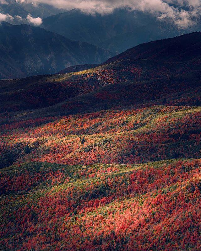 Fall in Utah is pretty rad. And pretty pretty.