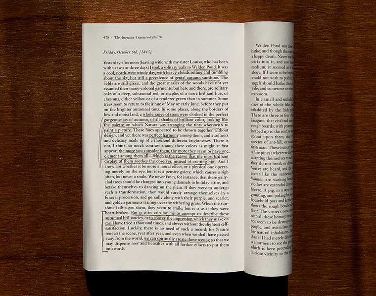 Page from Nathaniel Hawthorne's  American Notebooks