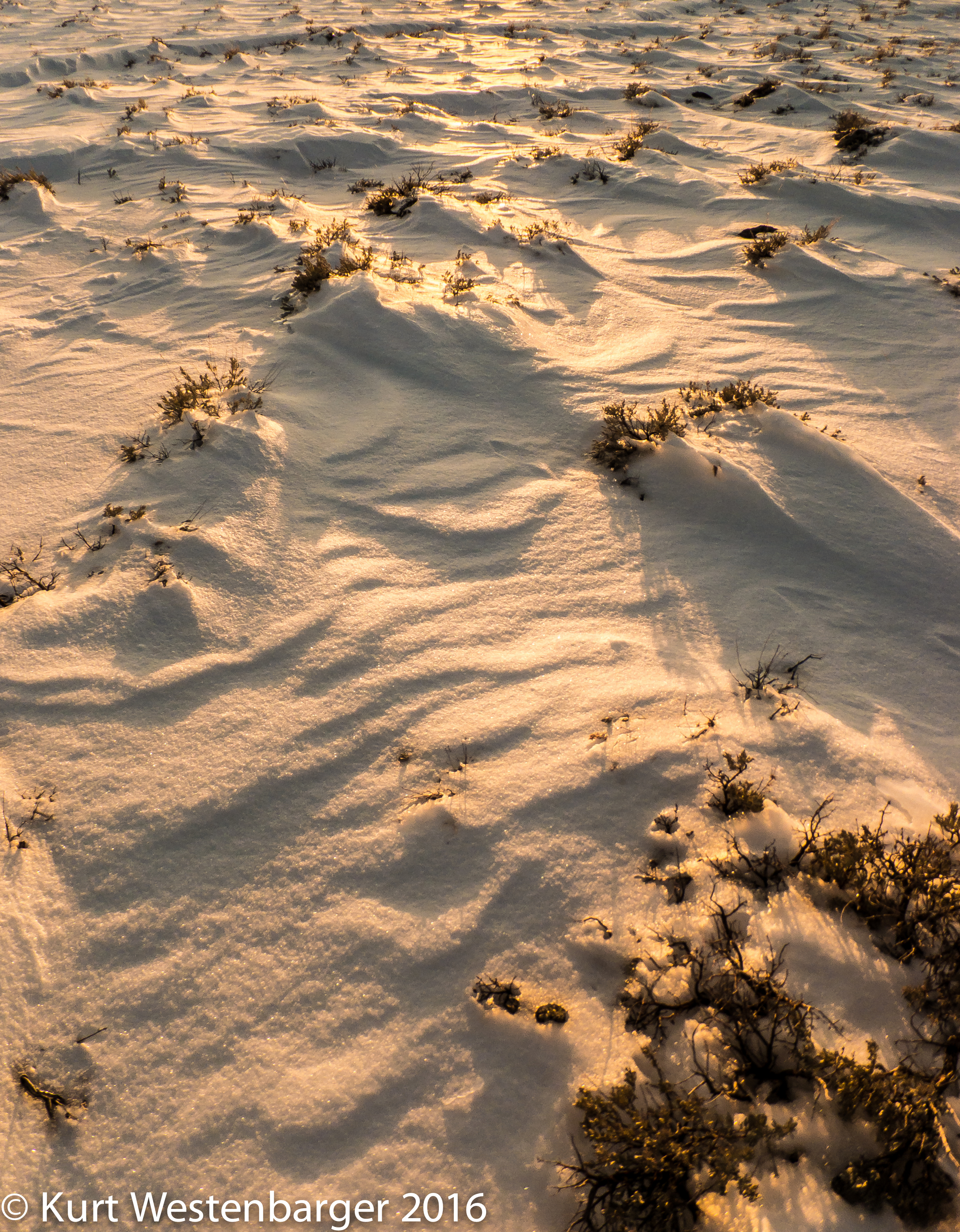 Snow patterns in sunset light.  Fujifilm F900EXR