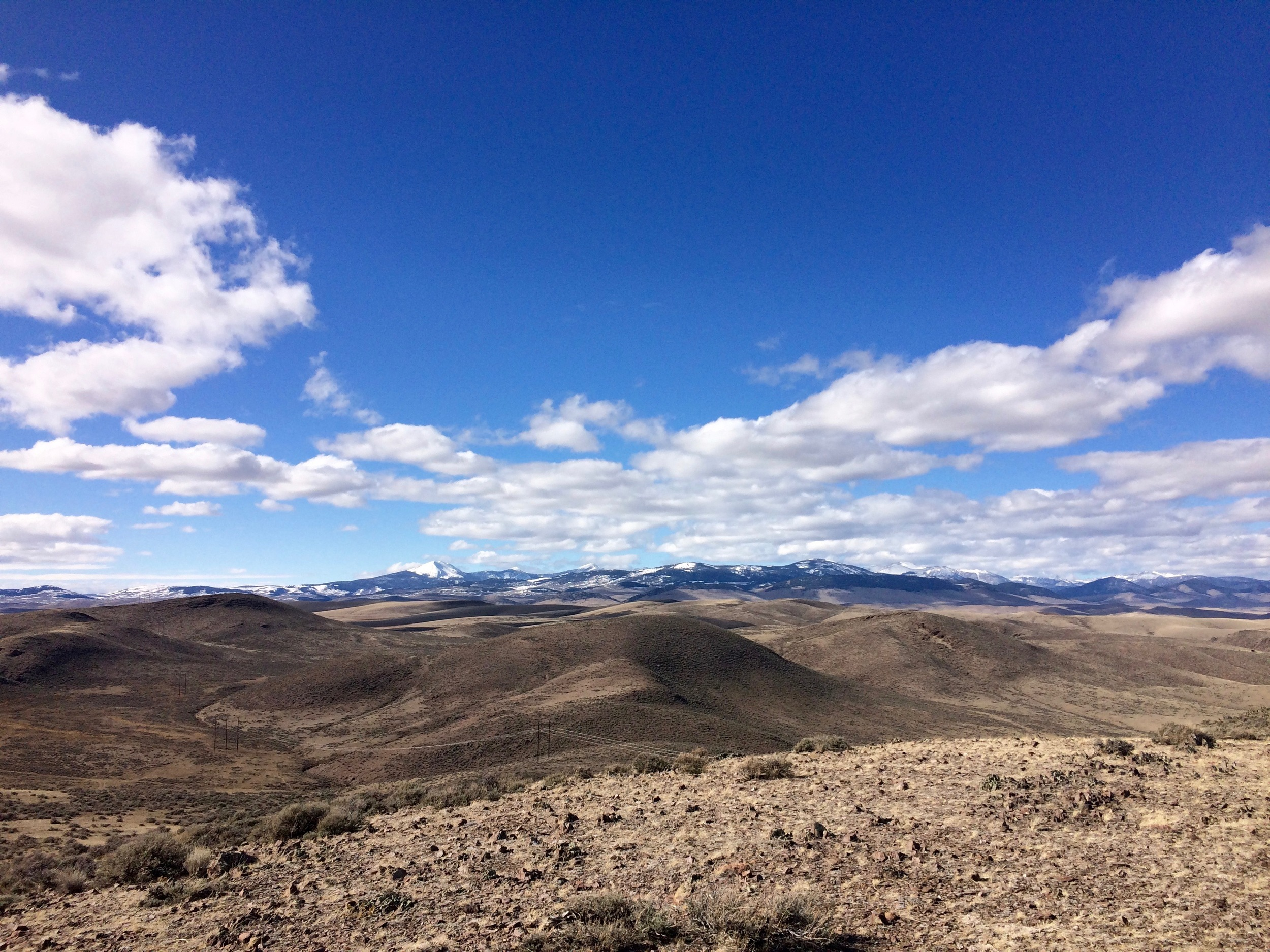 View from a recent walk on the Dillon Town Overlook Trail. Mount Baldy, the Pioneer Mountains, is on the horizon and likely to appear as a trail entry in this blog later in the year.
