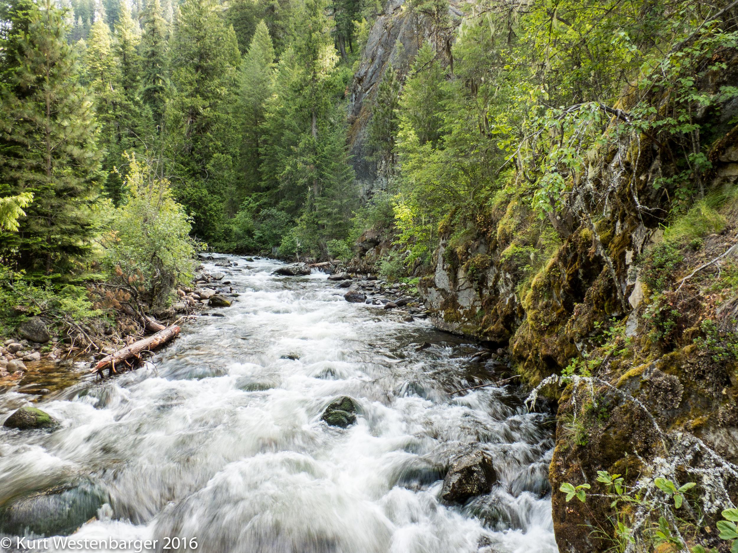 160613_Selway River Trail_074.jpg