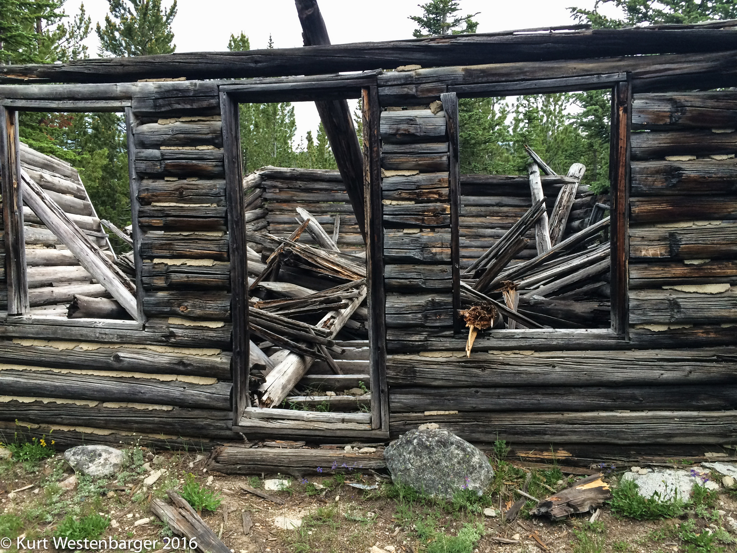 A ruined log cabin at Schulz Lake. Know any of it's history?