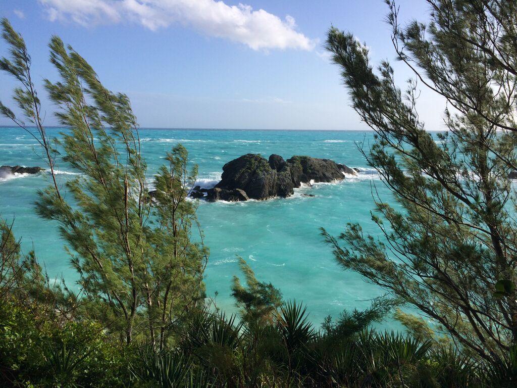 Bermuda Boulders, January 2015