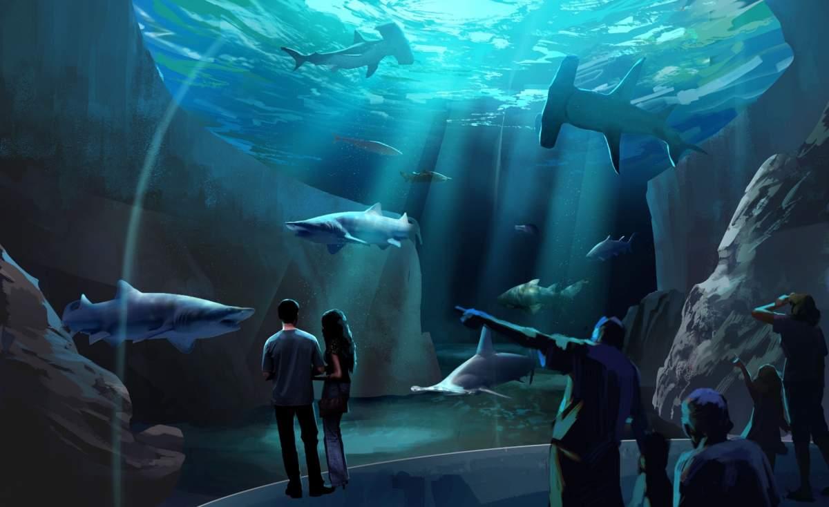 Expansion-2020-georgia-aquarium-shark-habitat.jpg