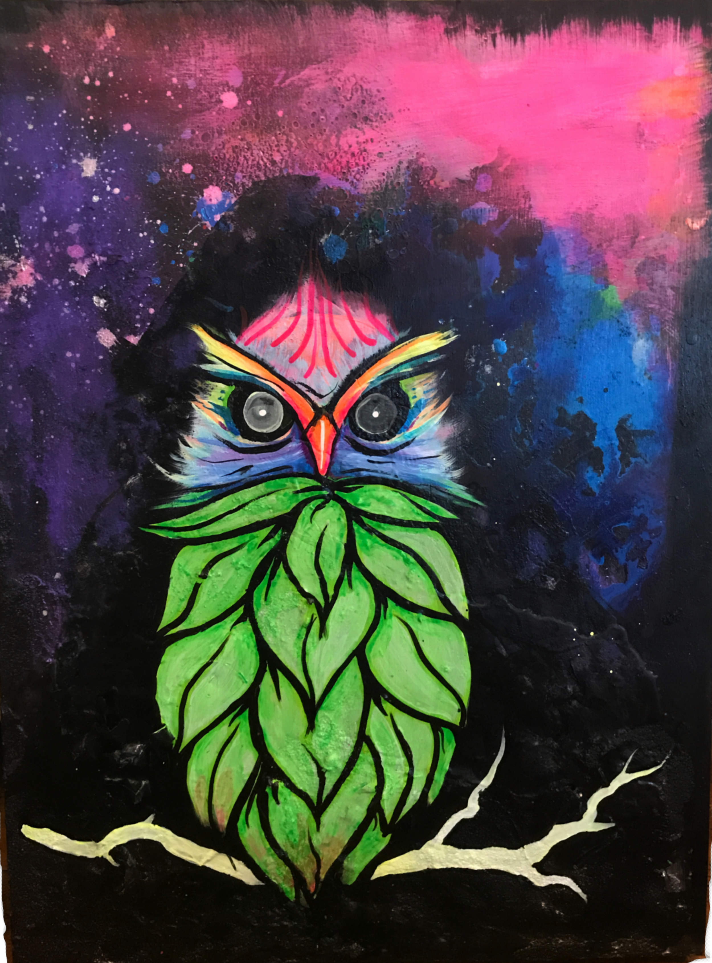 Cosmic Hop Owl - An example of some of the work displayed