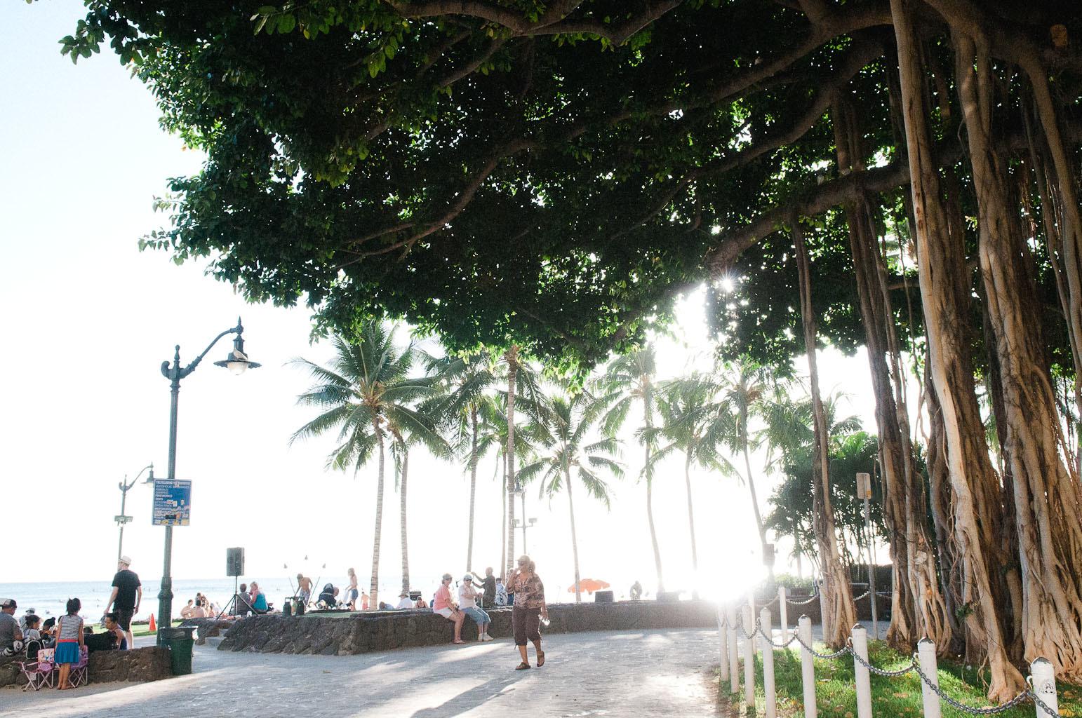 hawaii2013_24.jpg