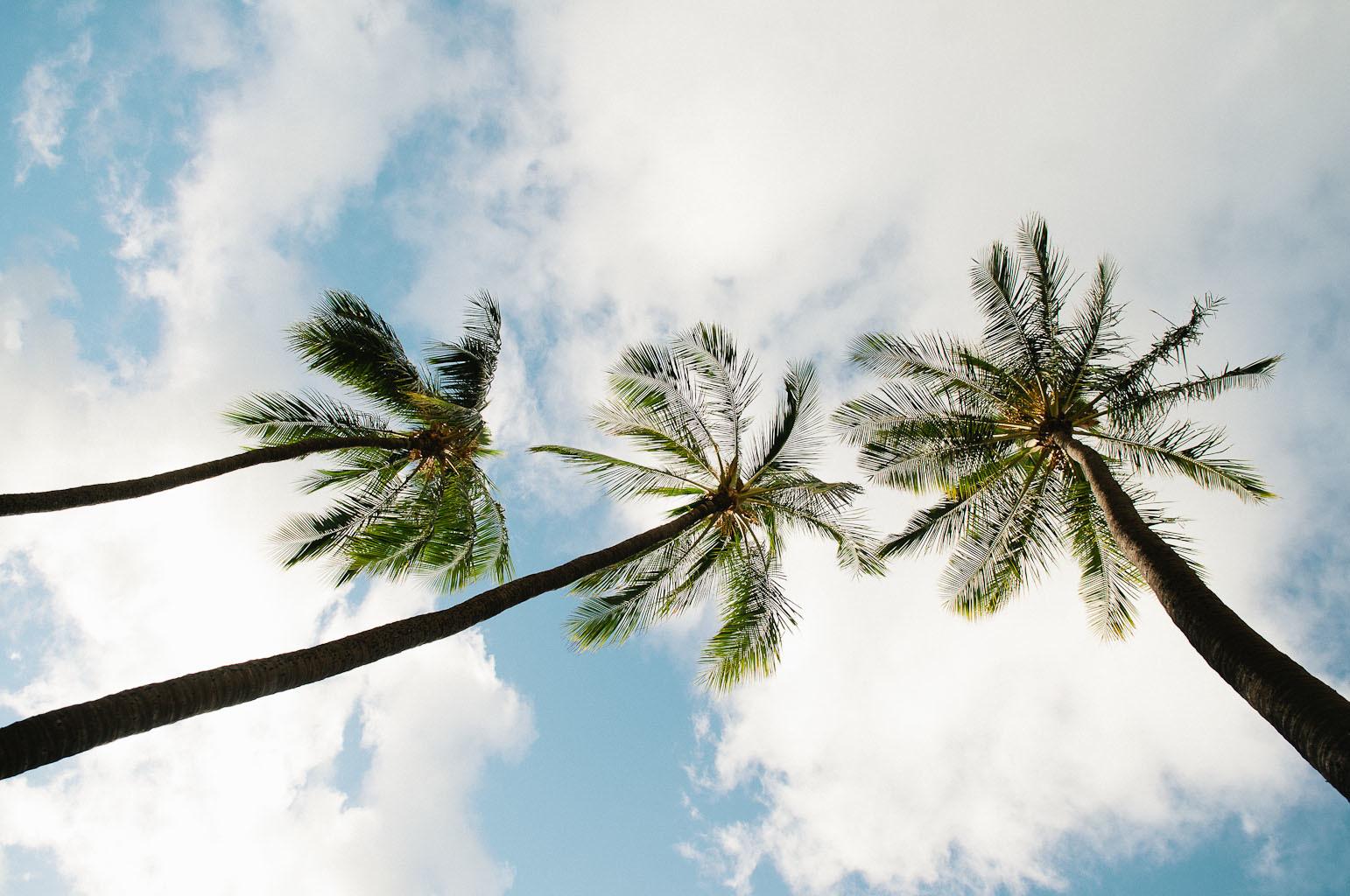 hawaii2013_80.jpg
