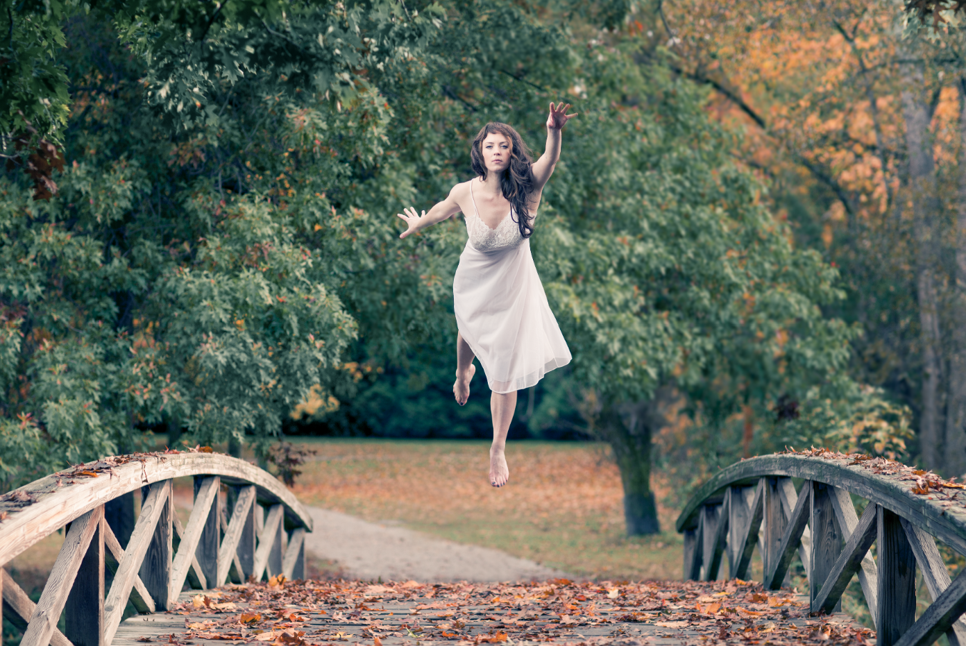 Fall with Phillip Lanyon DOP