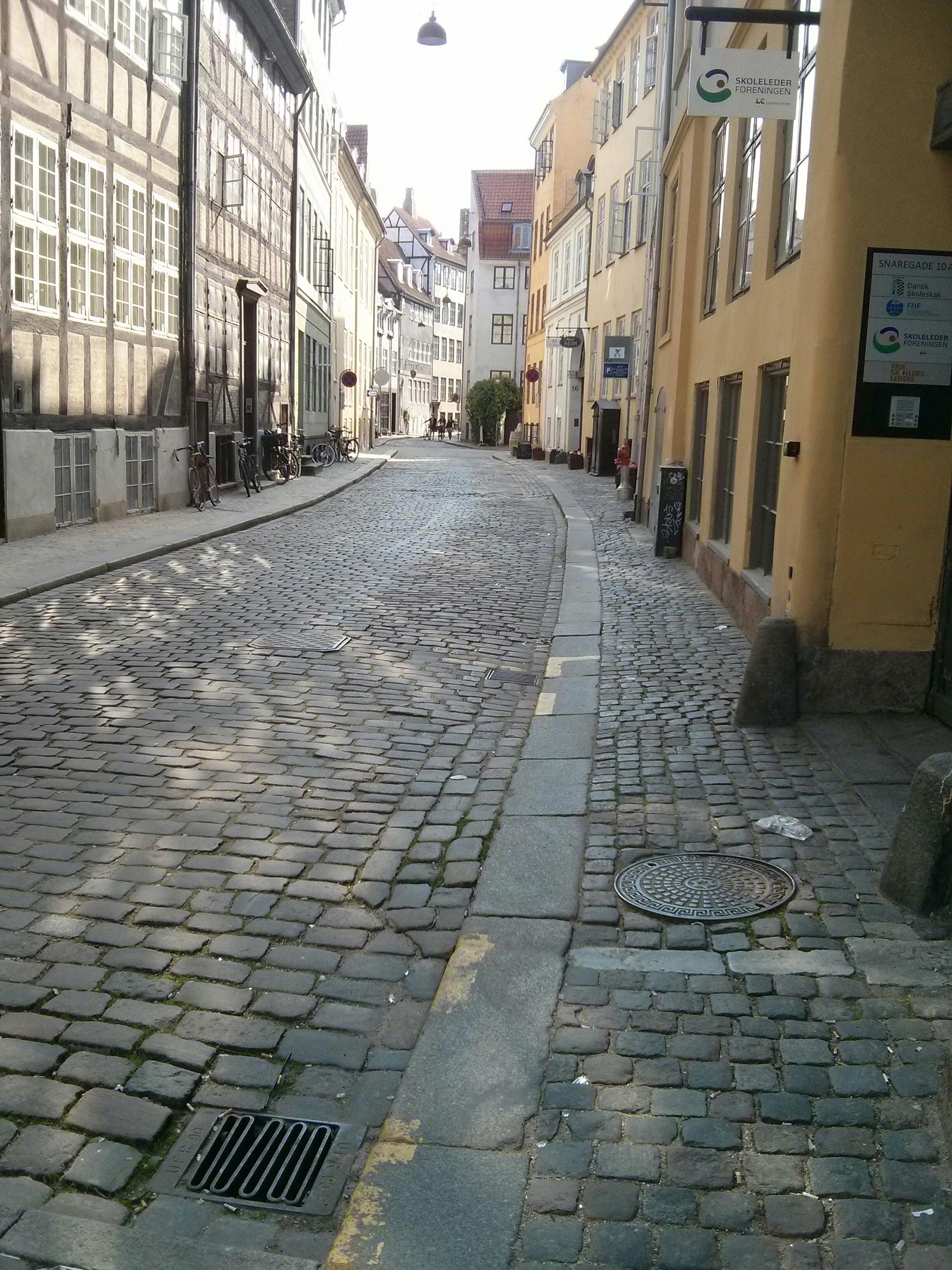 just a lovely pieceful street in the heart of copenhagen