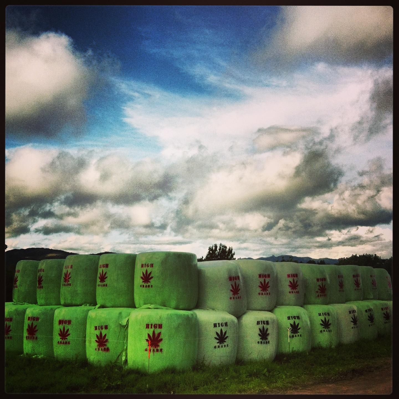urban art in a rural environment