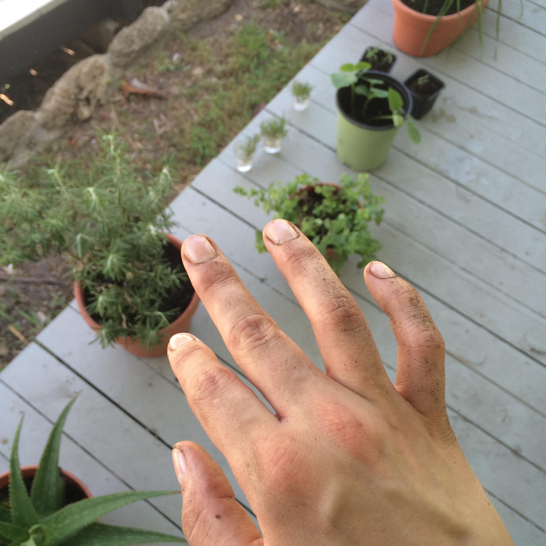 Gerden manicure!