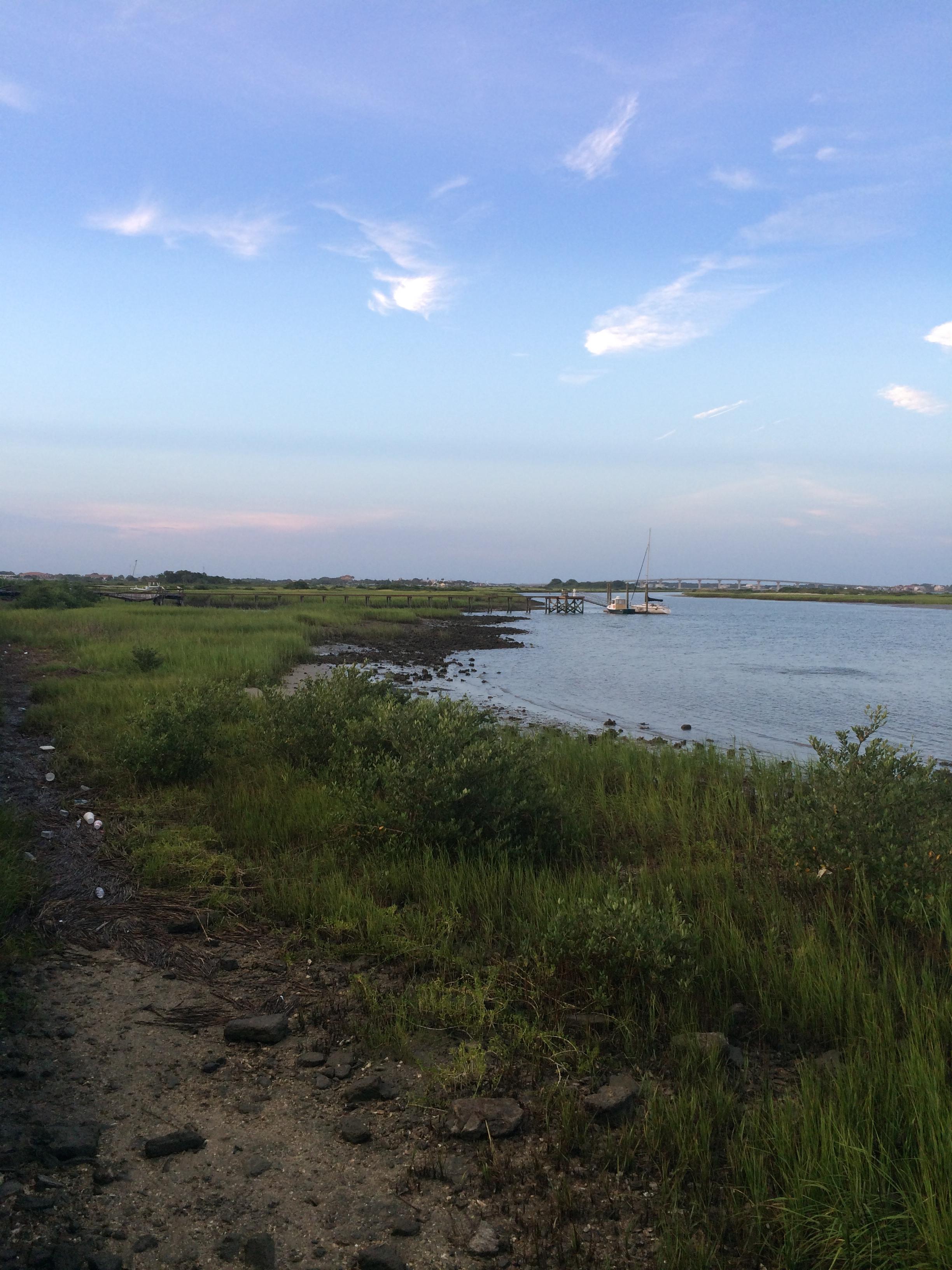 Watching Fiddler Crabs near the Fort
