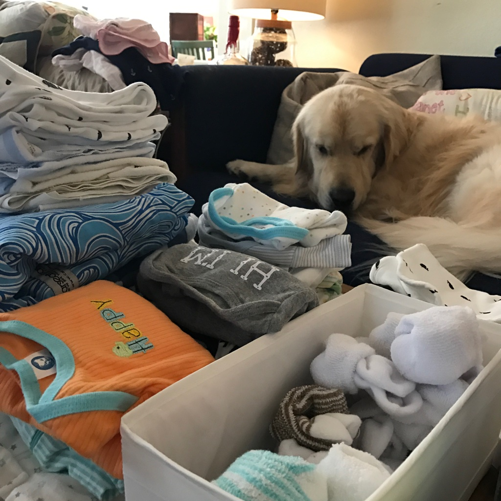 Archie Helping with Laundry