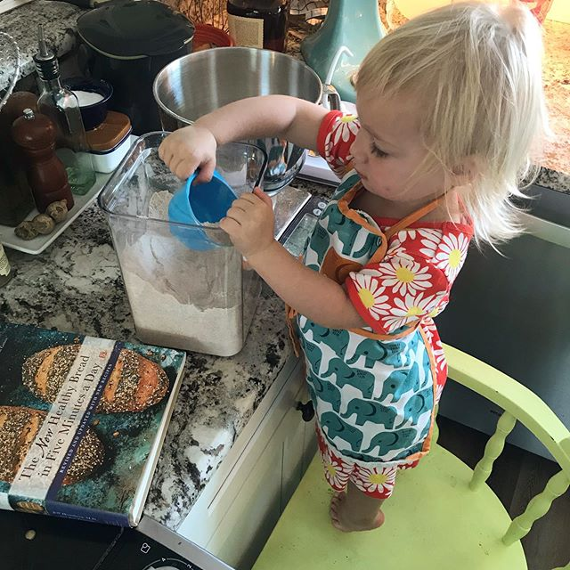 Fun & easy having Wynnie help make pizza dough because we can use the weigh method (so the 32 scoops it took to get to 2 pounds was no biggy!) 🍕#breadin5 #artisanbreadin5 #zoebakes #bakingwithkids