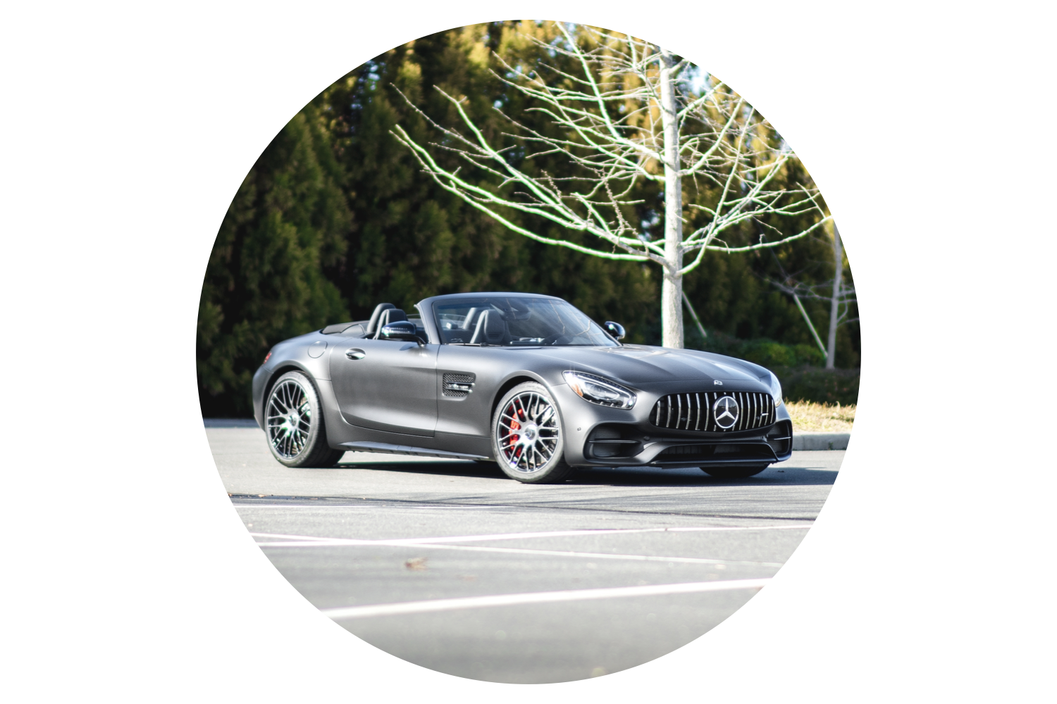 mercedes-benz-amg-gtc-edition-50.png