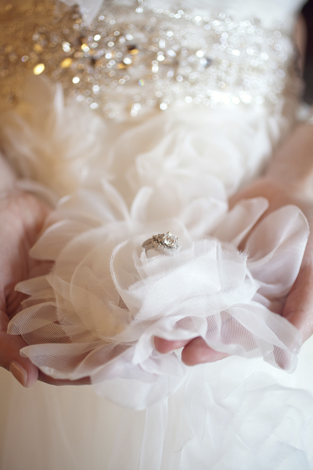 Indianapolis-Indiana-Wedding-Photographer-Crowes-Eye-Photography-Rings-detail.jpg