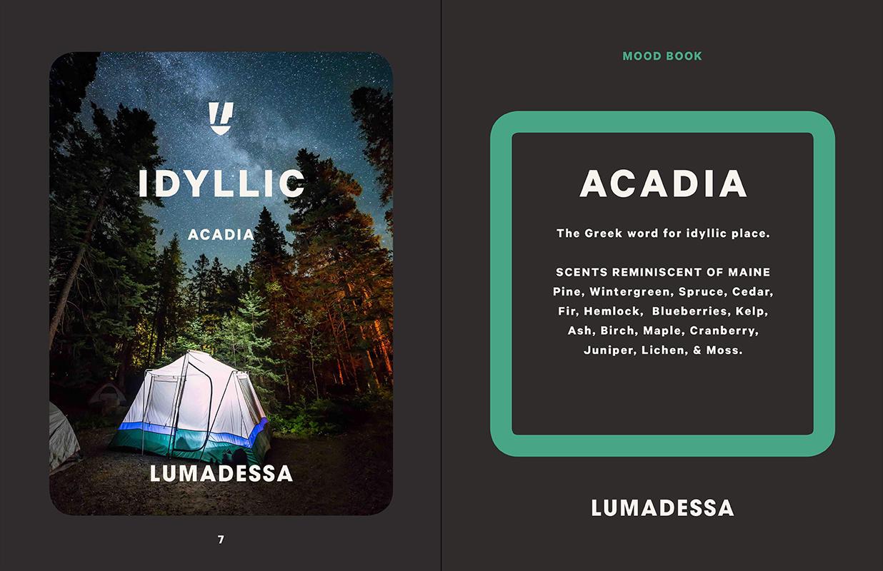 Lumadessa_Acadia_Moodboard3.jpg