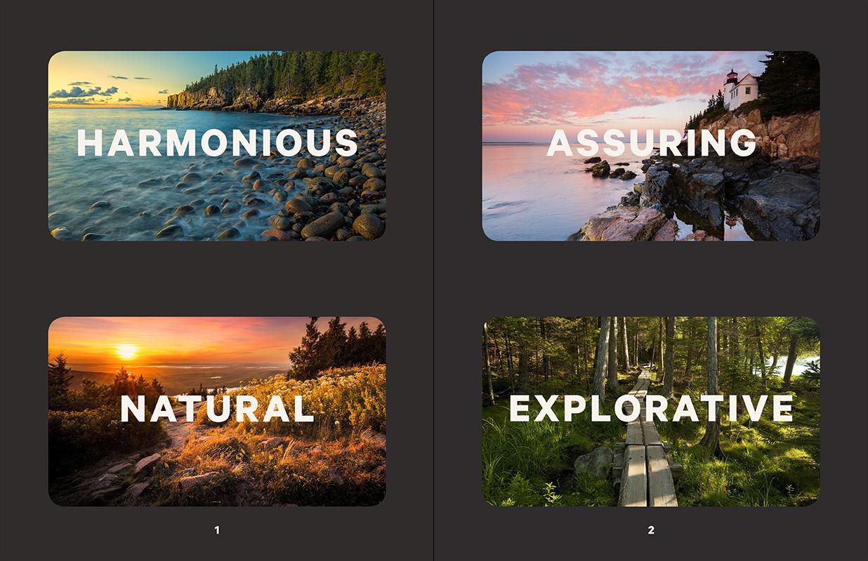 Lumadessa_Acadia_Moodboard1.jpg