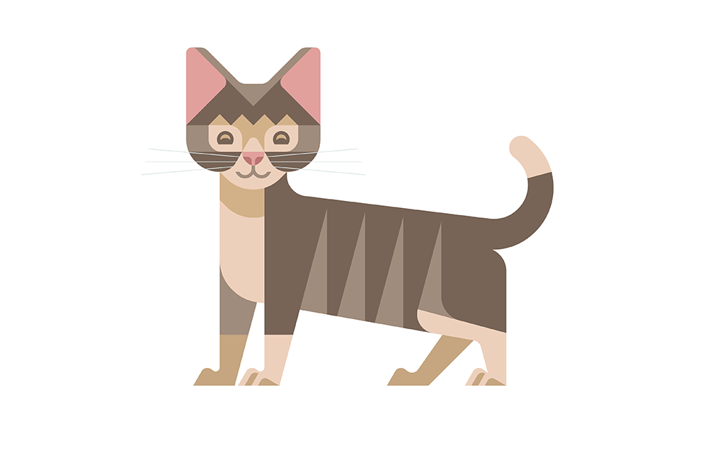 Kitten by JOSH BRILL.png