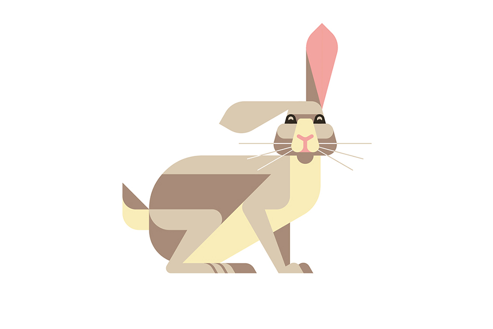 Rabbit by JOSH BRILL.jpg