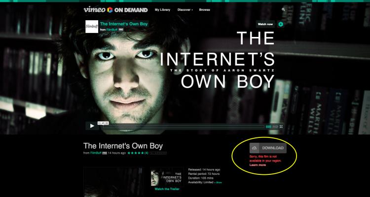 The Internet s Own Boy