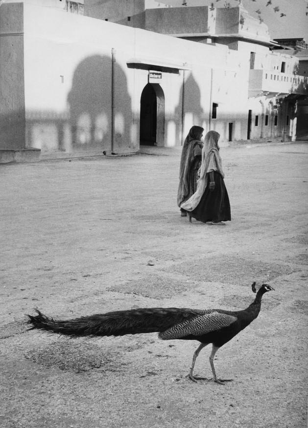 Jaipur, India  1956