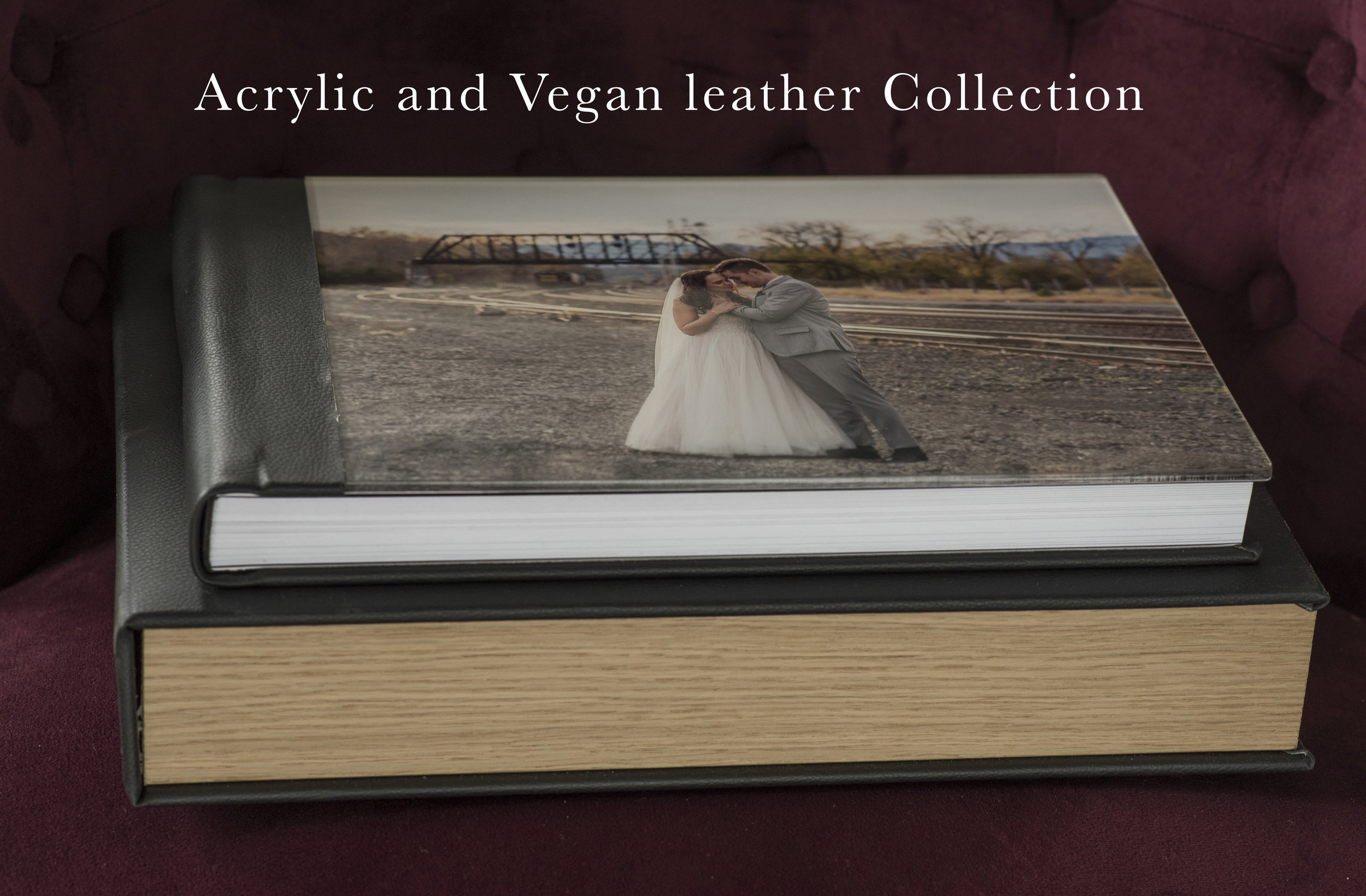 Our next favorite is the beautiful, modern acrylic cover.I love the way images sing on this time honored album. Here it is shown with a leather and wood case, with custom embossing in blind or foil.  Acrylic covers are always available as well for these lovely cases The albums shown here are 14x10-which means a two page spread is a large 28x10.