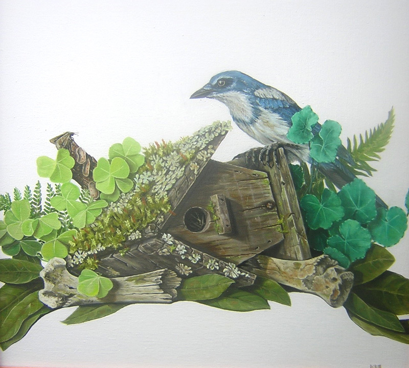 WoodlandFloor.jpg