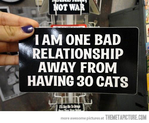 funny-crazy-cat-lady-quote.jpg