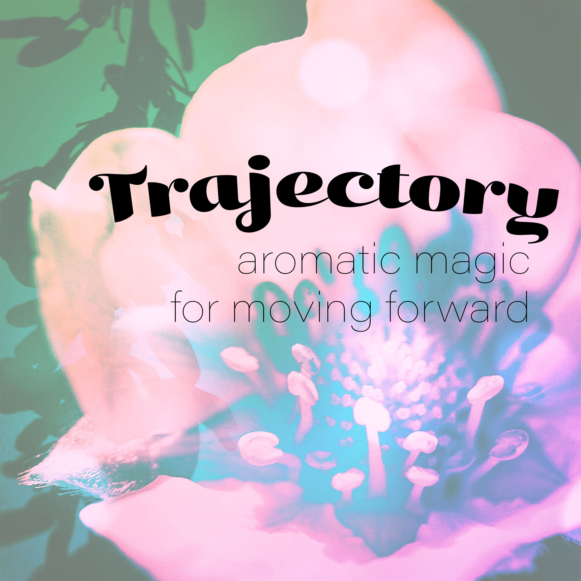 trajectory2.jpg