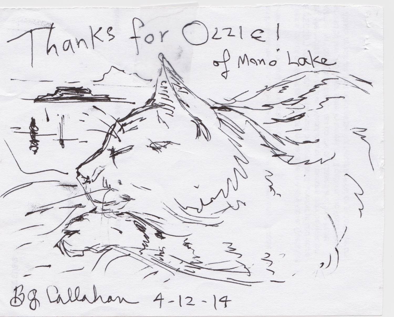 ozzy drawing 2014.jpeg