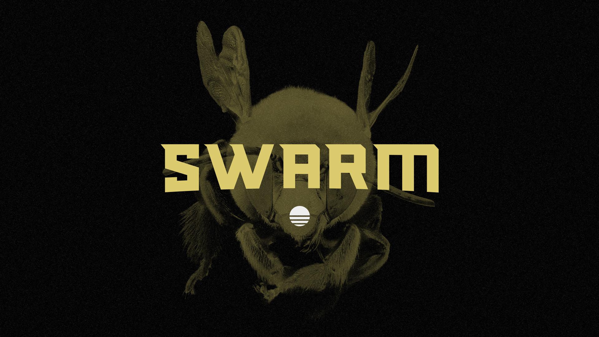 Team Swarm Slide.jpg