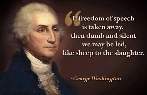 if-freedom-of-speech-is-taken-away-then-dumb-and-15730385.png