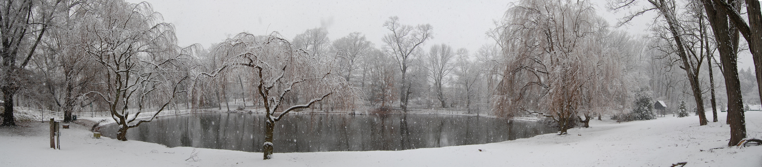 Snowy panoramas - Winter arrived in Bucks County today