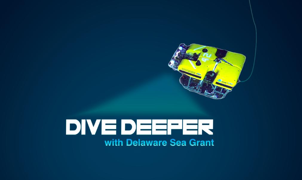 DESG-Dive-Deeper.png
