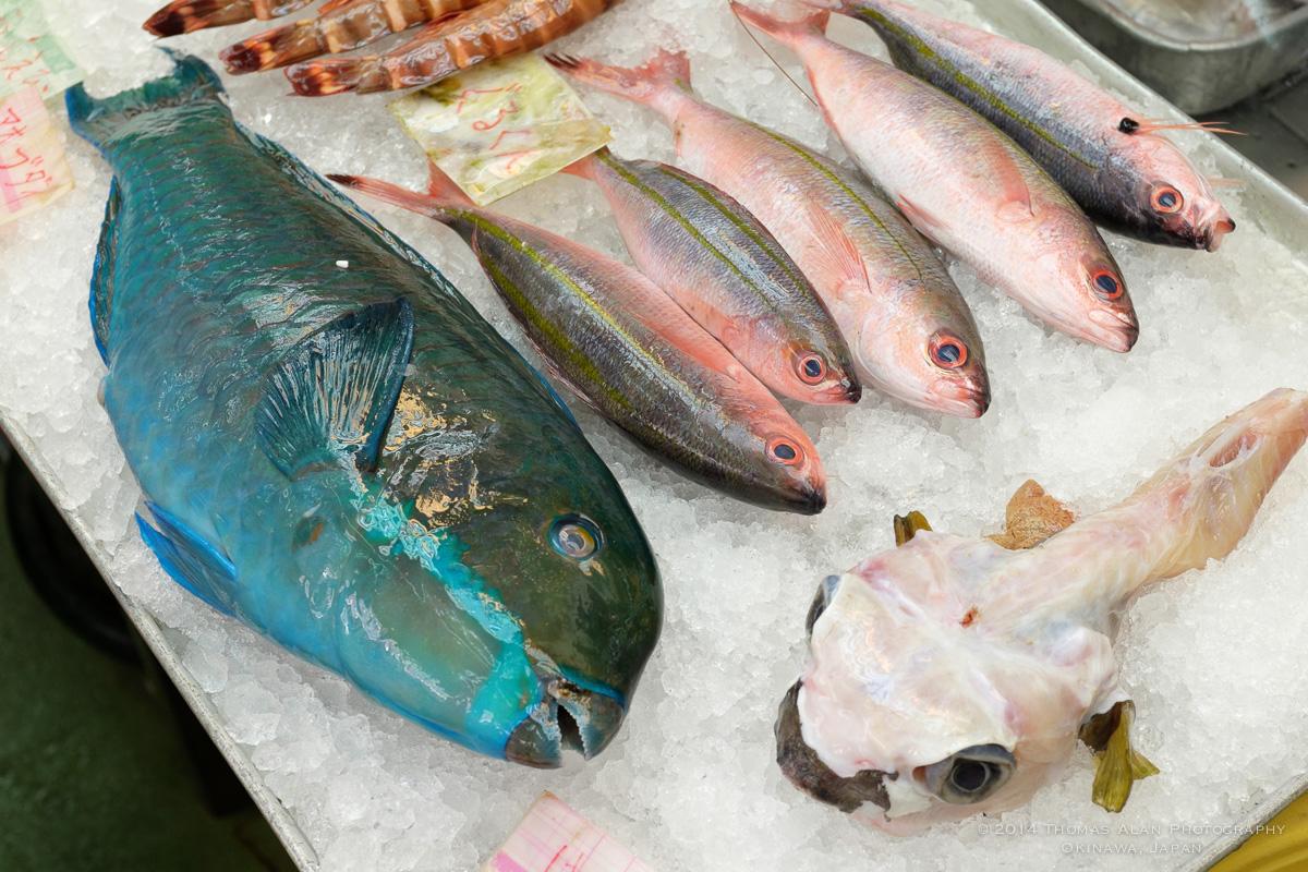 Naha Fish Market. Fuji x100s with TCL-X100 Teleconverter Lens. SOOC with Fuji Provia camera profile and Lens Correction applied. f/5.6, 1/100 sec, ISO 640.