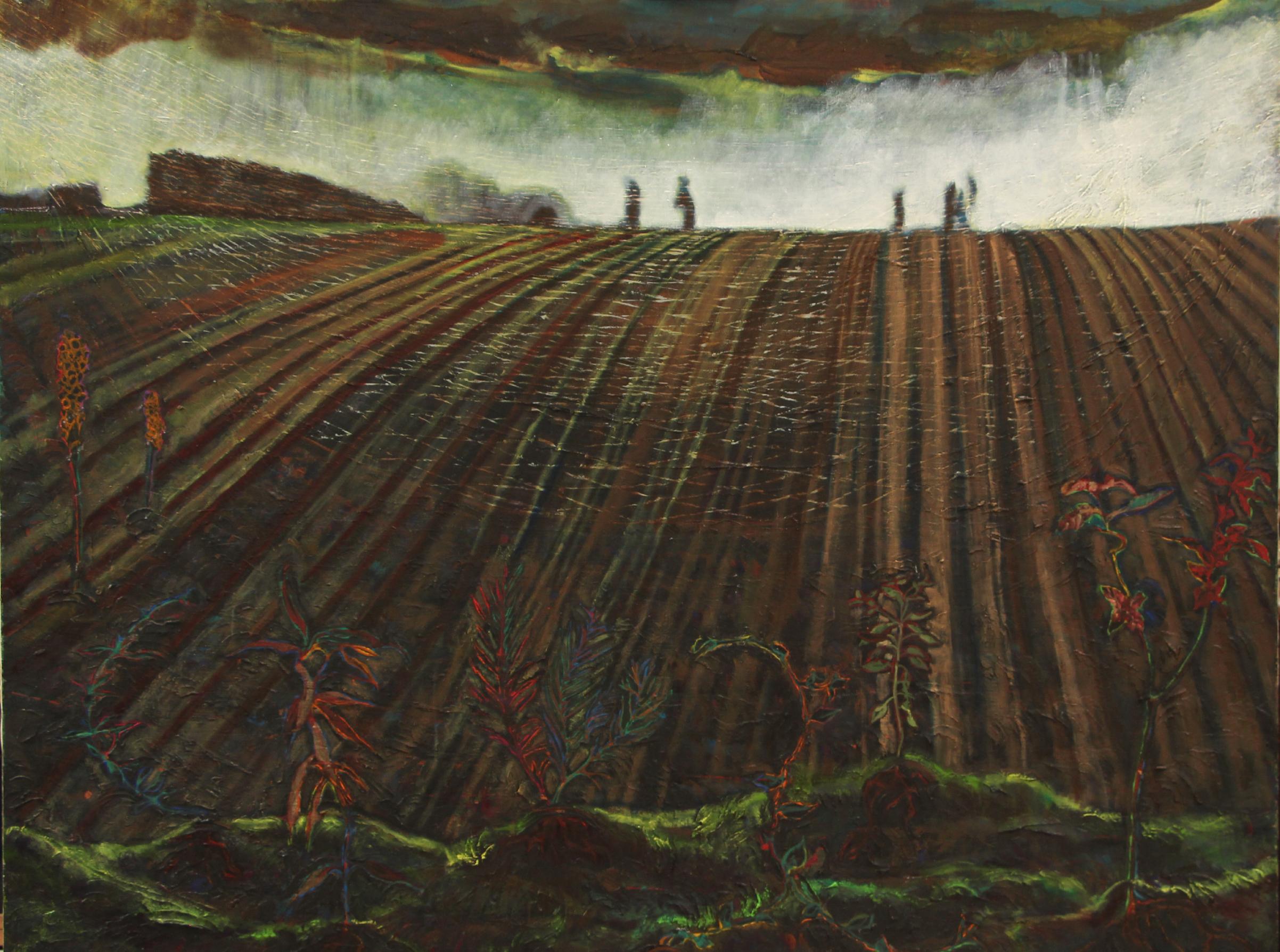 Lettuce pickers 1520mm x 1210mm.ps.jpg