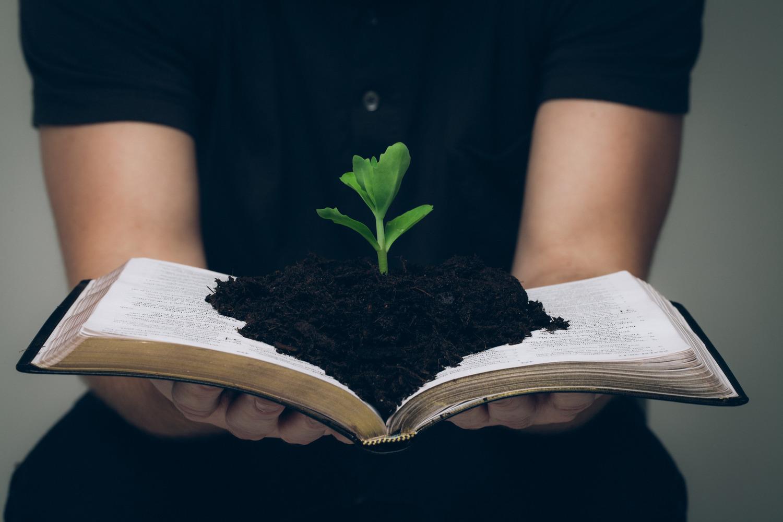 Discipleship Classes — Friendship Presbyterian Church