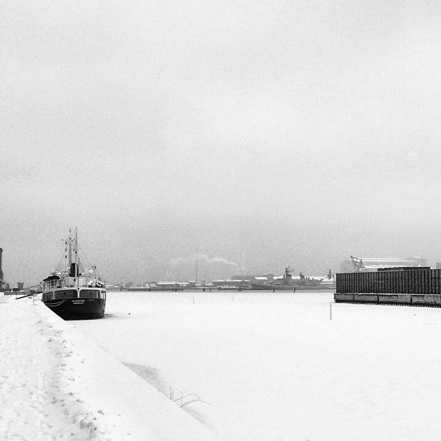 #copenhagen docks are #frozen #winterishere mighty cold today