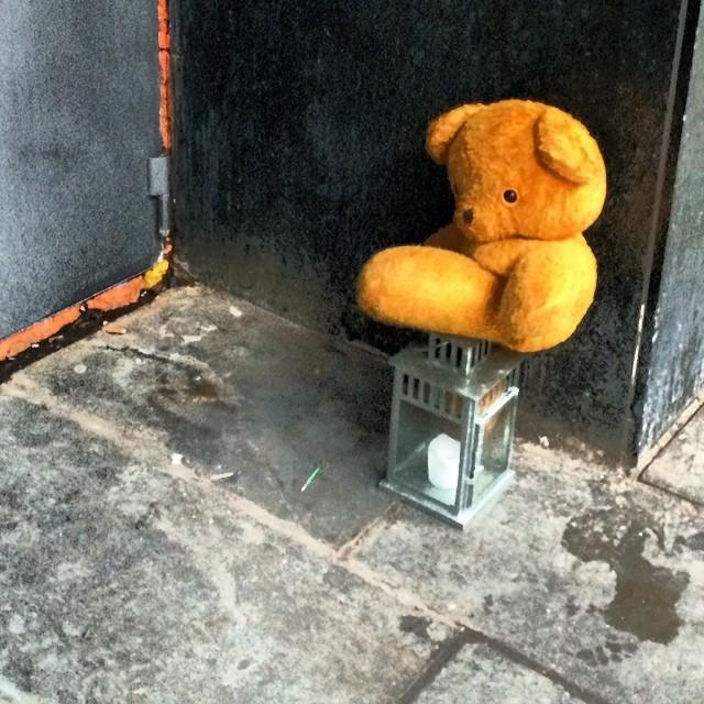 Nothing quite as forlorn as a homeless #teddybear #copenhagen