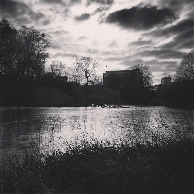 #icy wintery #reflection in #ørestedparken #copenhagen