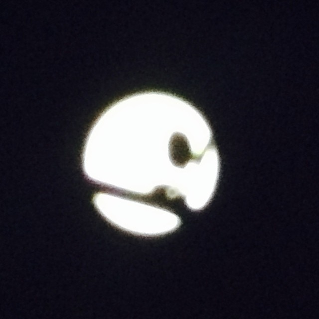 #iseefaces #pareidolia - man in the #moon , close crop caused by a twig and a leaf