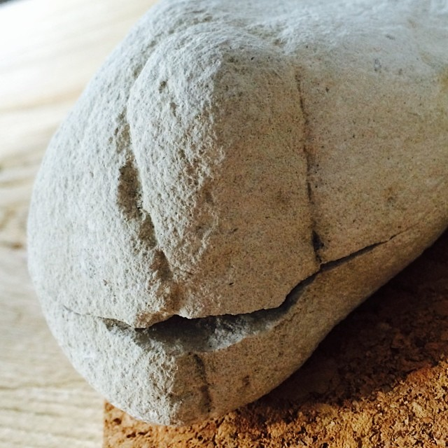 #iseefaces #pareidolia smiley little stone or whale?