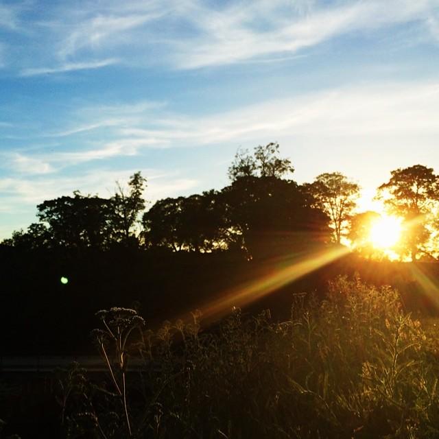 #sunset over #kastellet #copenhagen #vscocam